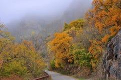 Automne d'or de paysage de montagne Image stock