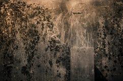 Automne d'ombre Photographie stock