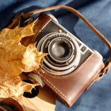 Automne d'un appareil-photo Photographie stock