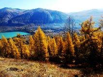 Automne dans des kanas de lac Photos stock