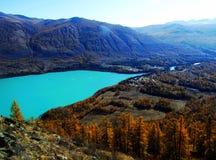 Automne dans des kanas de lac Photo libre de droits