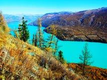 Automne dans des kanas de lac Images libres de droits