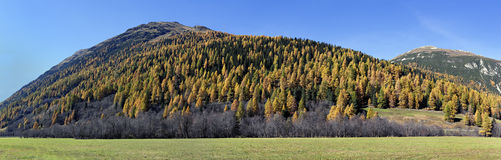 Automne dans Engadina, Switxerland Photos stock