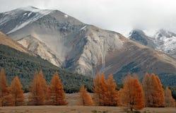 Automne dans l'horizontal d'Alpes Photographie stock