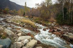 Automne dans la forêt de montagne photographie stock libre de droits
