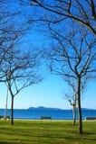 Automne dans la plage Images libres de droits