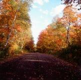 Automne dans la réserve forestière supérieure - Minnesota Images stock