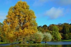 Automne dans le comté anglais de Somerset Photos stock