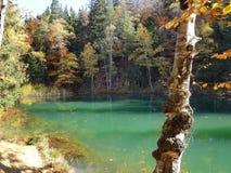 Automne dans le lac de couleur de la Pologne photos libres de droits