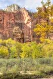 Automne dans le temple de Sinawava Photo stock