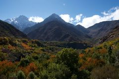 Automne dans les collines des montagnes d'atlas image libre de droits