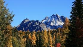 Automne dans les hautes montagnes de Tatras Images libres de droits