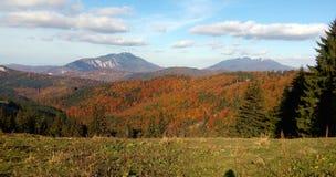 Automne dans les montagnes Photos stock