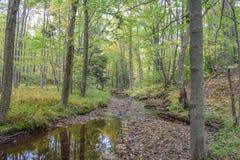 Automne dans les montagnes d'Allegheny Photo stock
