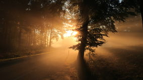 Automne dans les montagnes Lever de soleil photo stock