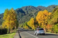 Automne dans une petite ville du Nouvelle-Zélande photographie stock libre de droits