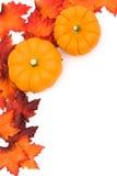 automne de cadre Photos stock