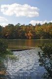 automne de couleur Photo stock