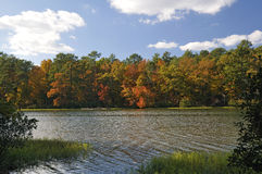 automne de couleur Photographie stock
