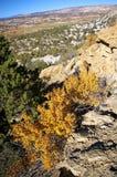 automne de couleurs Images stock