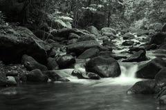 Automne de l'eau Photo libre de droits