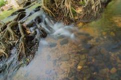 Automne de l'eau Photographie stock