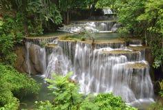 Automne de l'eau dans la forêt profonde Photographie stock libre de droits
