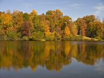 automne de la Caroline photographie stock