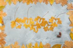 Automne de lettrage sur des feuilles d'érable avec le cadre de feuille sur un b concret Photo libre de droits