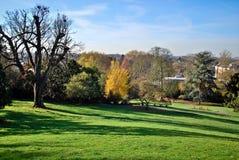 Automne de Londres, Richmond Park Image libre de droits
