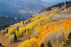 Automne de montagne Photographie stock libre de droits