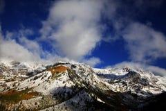 Automne de montagne rocheuse images libres de droits
