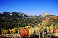 Automne de montagne rocheuse photographie stock libre de droits