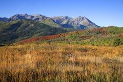 Automne de montagne rocheuse Photos stock