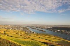 Automne de Rheingau Images libres de droits