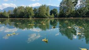 Automne de rivière Photo libre de droits