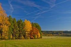 Automne du feu de forêt de nature d'herbe de bouleau de sapin d'horizon de nuage de pin d'arbre forestier de ciel Photographie stock libre de droits