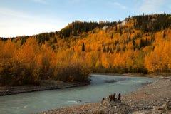 Automne en Alaska Photographie stock libre de droits