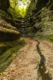 Automne en canyon français, Photographie stock