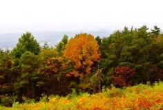 Automne en montagnes photo stock