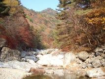 Automne en montagnes Image libre de droits