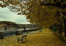 Automne en parc à Prague Photos libres de droits