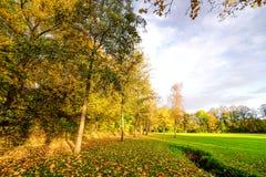 Automne en parc avec les arbres colorés Images stock