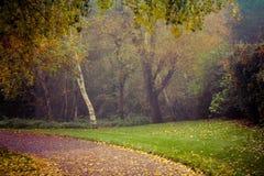 Automne en parc de Goldsworth dans Woking Image stock