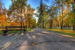 Automne en parc de ville photos libres de droits