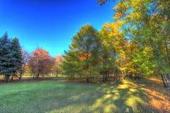 Automne en parc de ville Images libres de droits