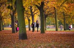 Automne en parc, habitants et familles de Londres marchant et appréciant le temps Photographie stock libre de droits