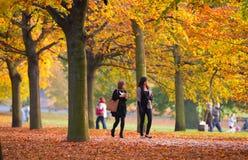 Automne en parc, habitants et familles de Londres marchant et appréciant le temps Photographie stock