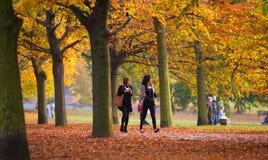 Automne en parc, habitants et familles de Londres marchant et appréciant le temps Image stock