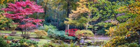 Automne en parc japonais photos libres de droits